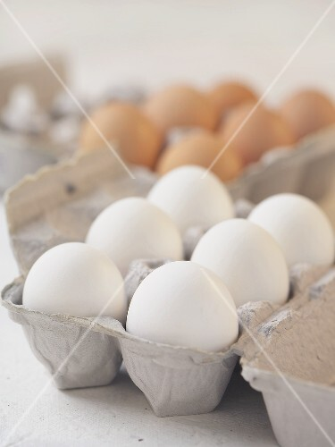 Half Dozen White Eggs in Carton, Brown Eggs in Carton ...