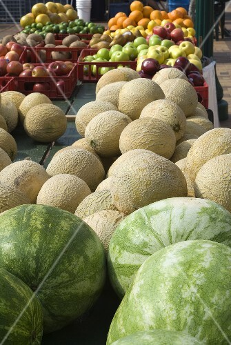 Assorted Melon and Fresh Fruit at an Outdoor Market