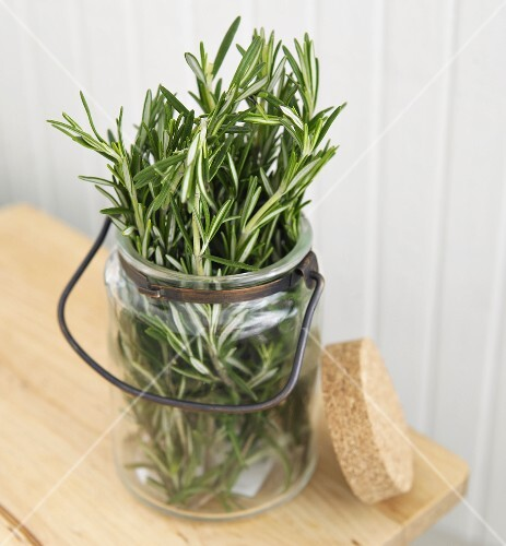 Fresh Rosemary in a Glass Jar