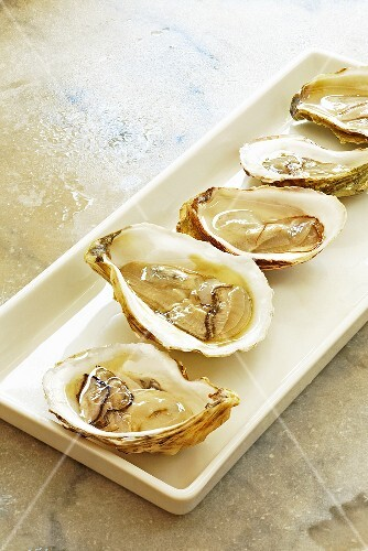Fresh Raw Atlantic Oysters on the Half Shell; On RectangularPlatter