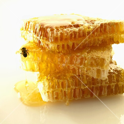 Honeycomb; Stacked; Bee
