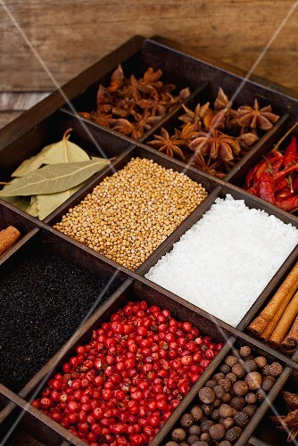 Exotic spices in a seedling tray