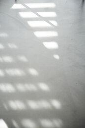 Image no. 13191664