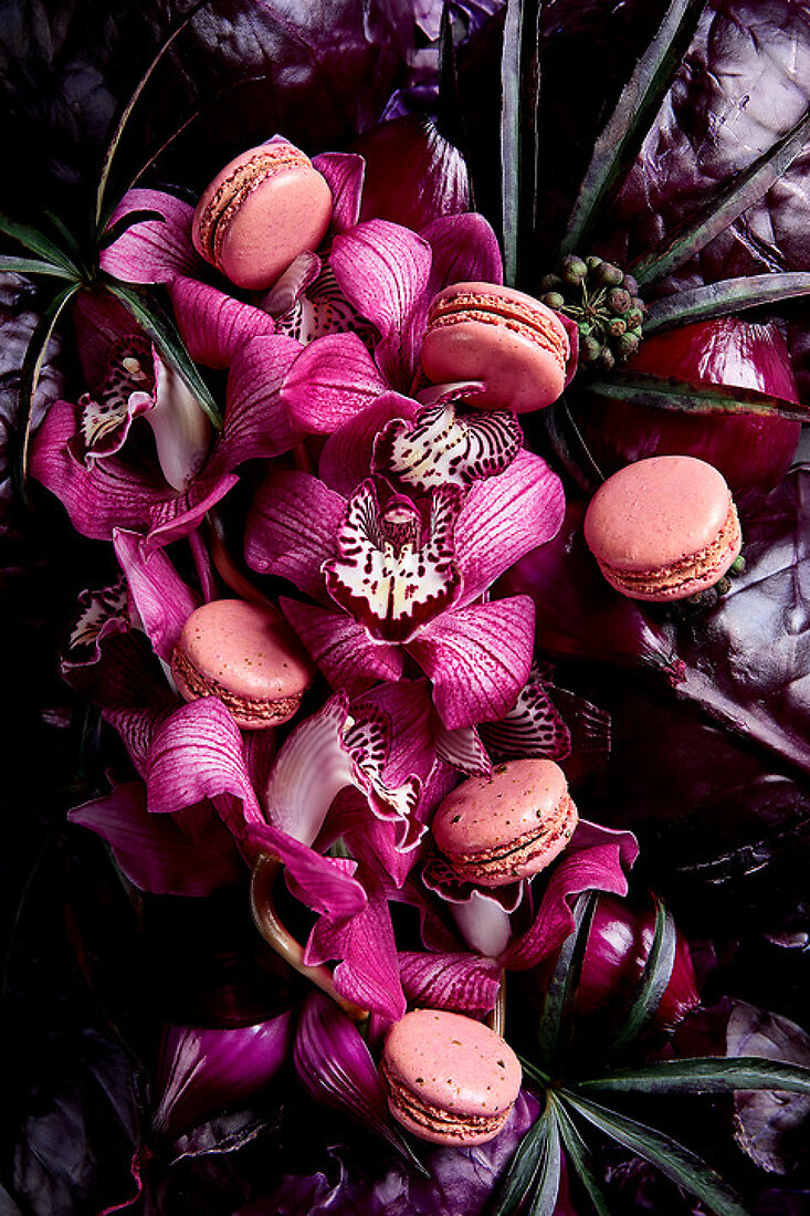 Sweet Flora Bella