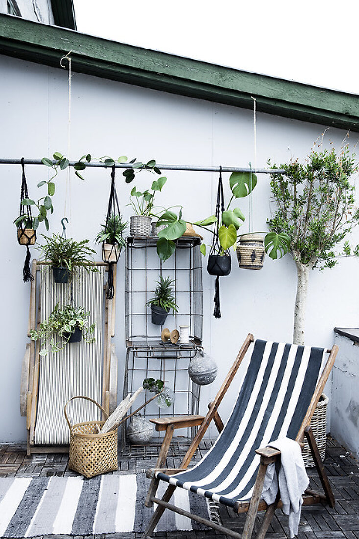 Optimize your Balcony with Plants