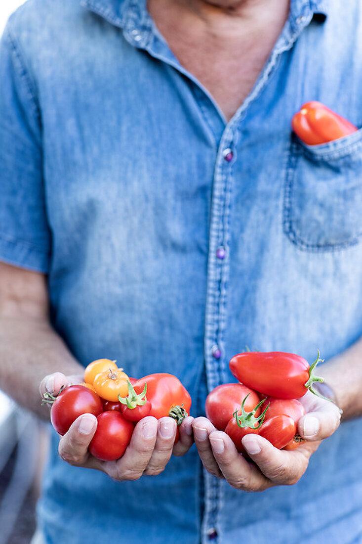 Beautiful Edible Favorites
