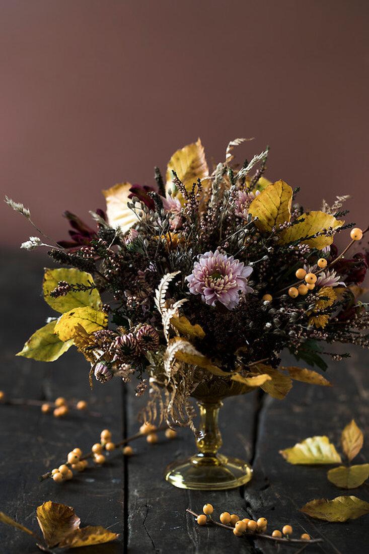 Autumn Flower Beauty