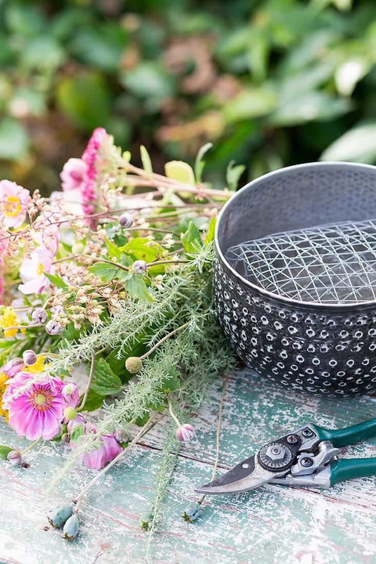 Late Bloomers - Autumn-Perennials