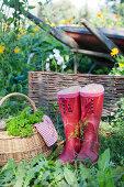 Organic Kitchen Yard