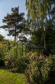 Creative Compact and Abundant Garden