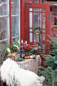 Greenhouse Christmas