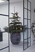 Ever Present Christmas