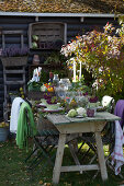 Outdoor Autumn Table Setting