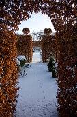 Aesthetic Winter Garden