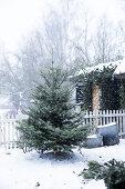 Christmas Starts Outside