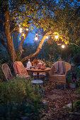 Light in the Autumn Garden