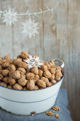 Wintery Walnuts