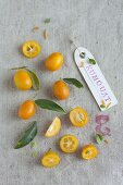 Kumquat - The Smallest of Citrus