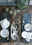 Decorate with Beach Findings