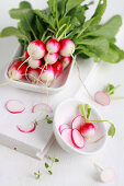 The Freshness of Radish