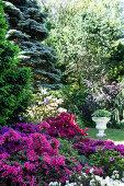 Botanic Garden at Peter Hansen