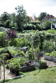 Ditte's Kitchen Garden