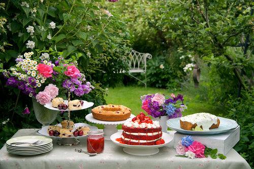 Cake and Cream - 11322407