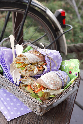 Picnic for Health