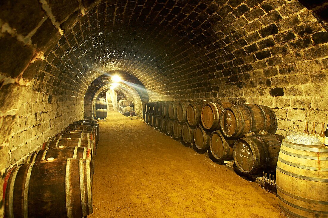 Wine cellar of Hetszolo Estate, Tokaj, Hungary