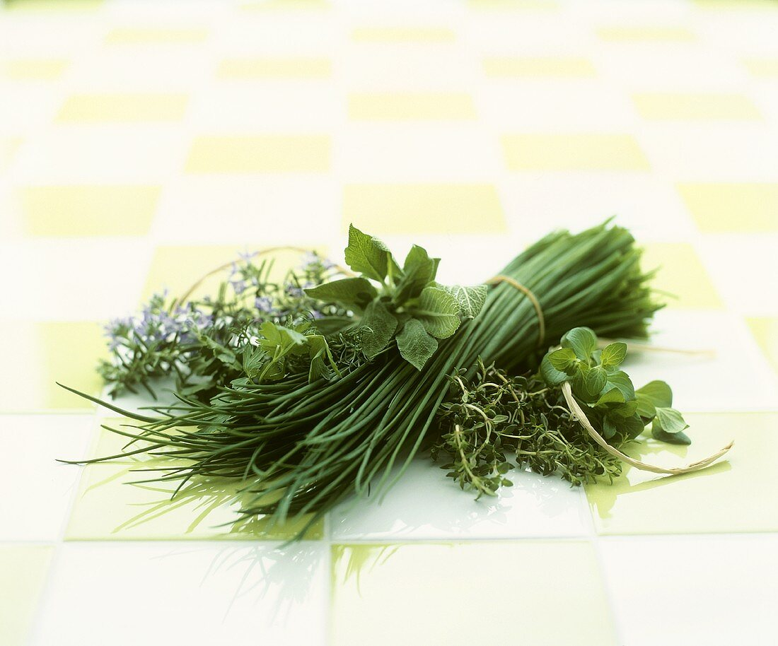 A selection of culinary herbs