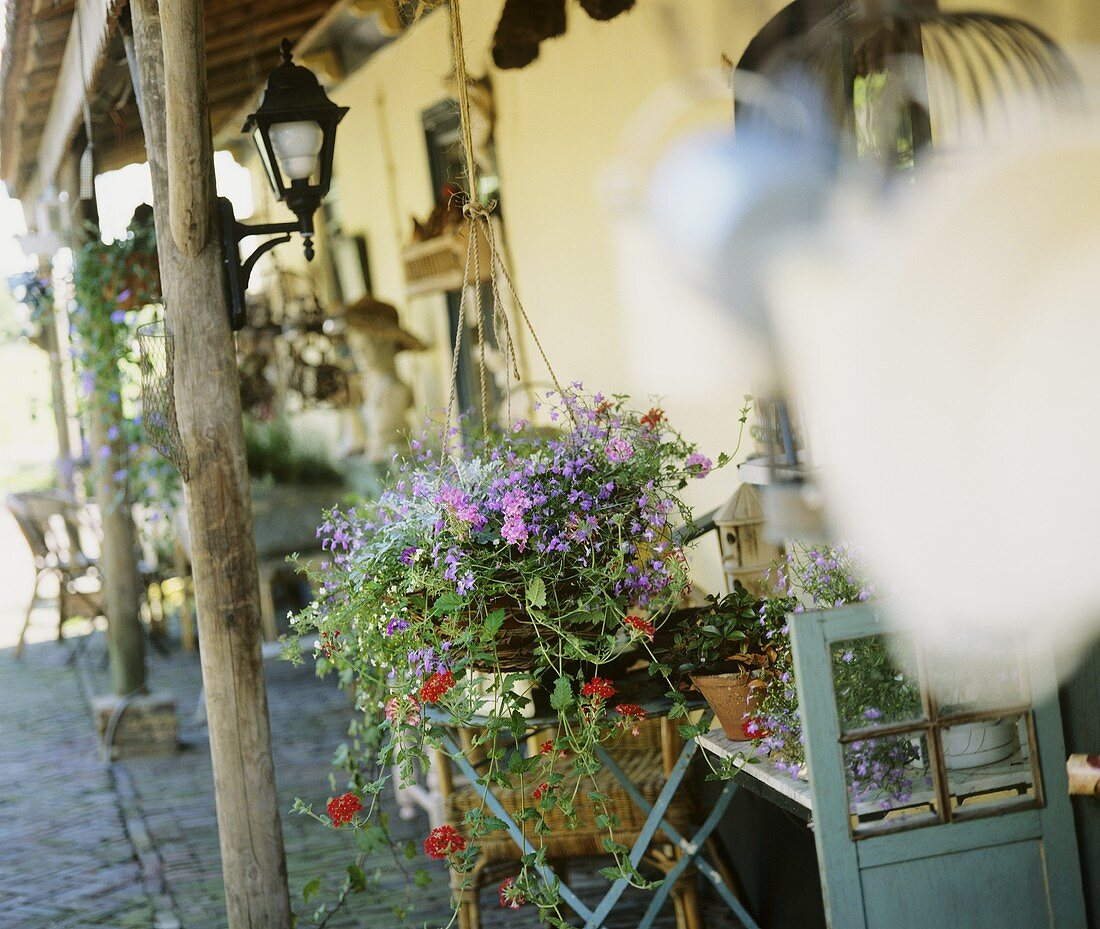 Verandah with hanging baskets
