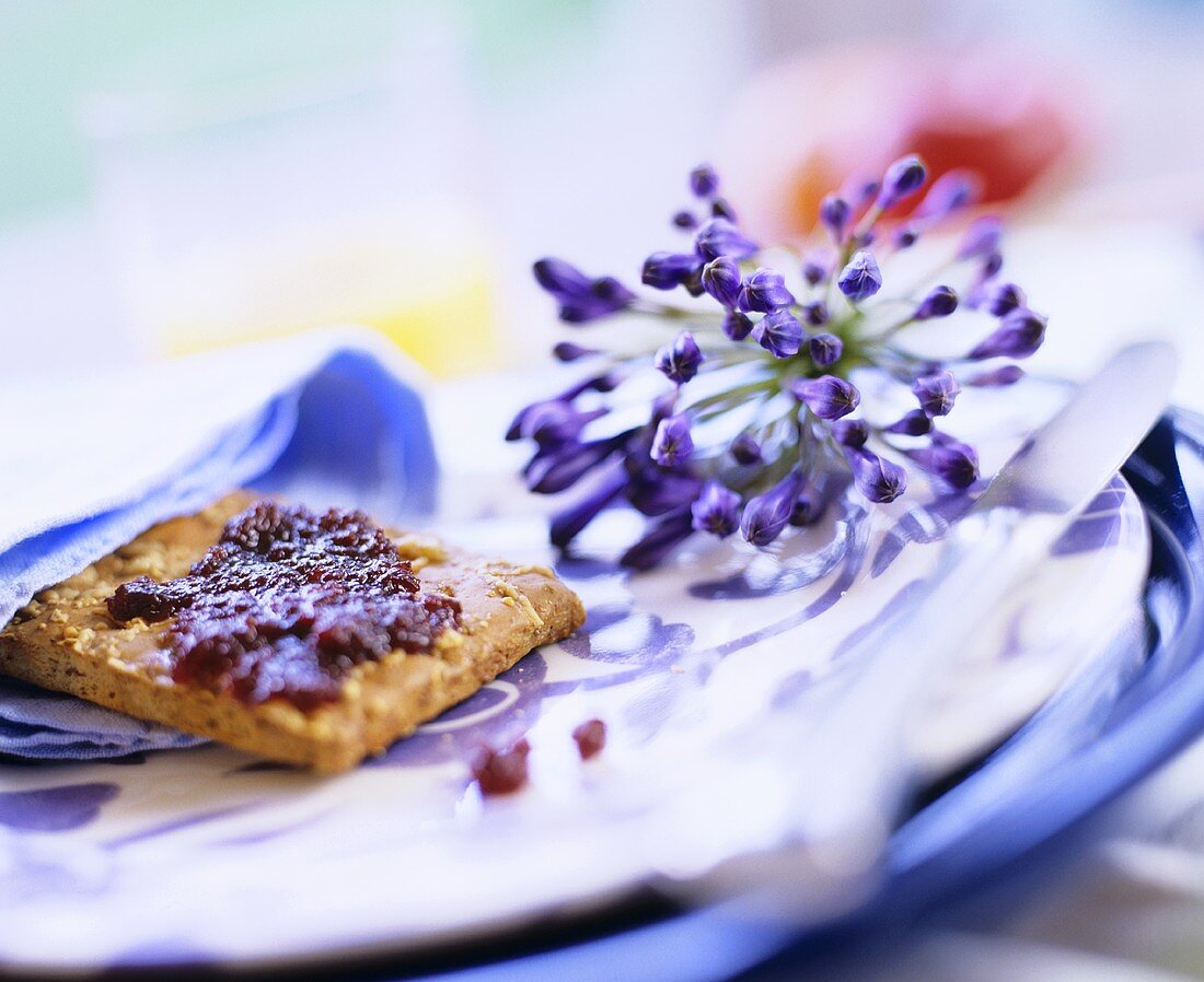 Lily of the Nile (Agapanthus praecox) on plate