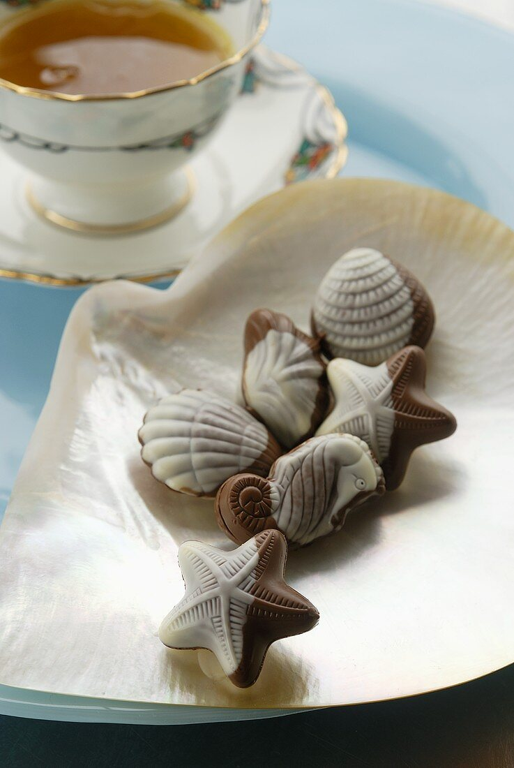 Belgian chocolate sea shells with praline filling, cup of tea