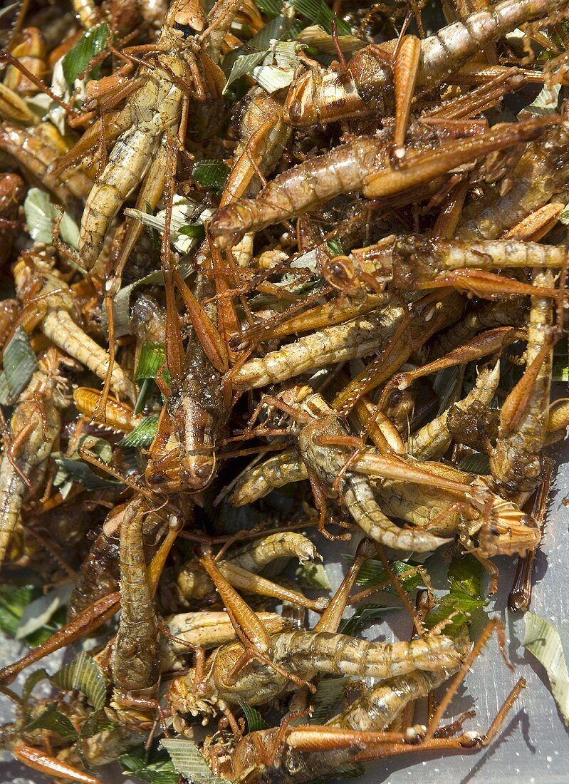 Roasted grasshoppers on an Asian market stall