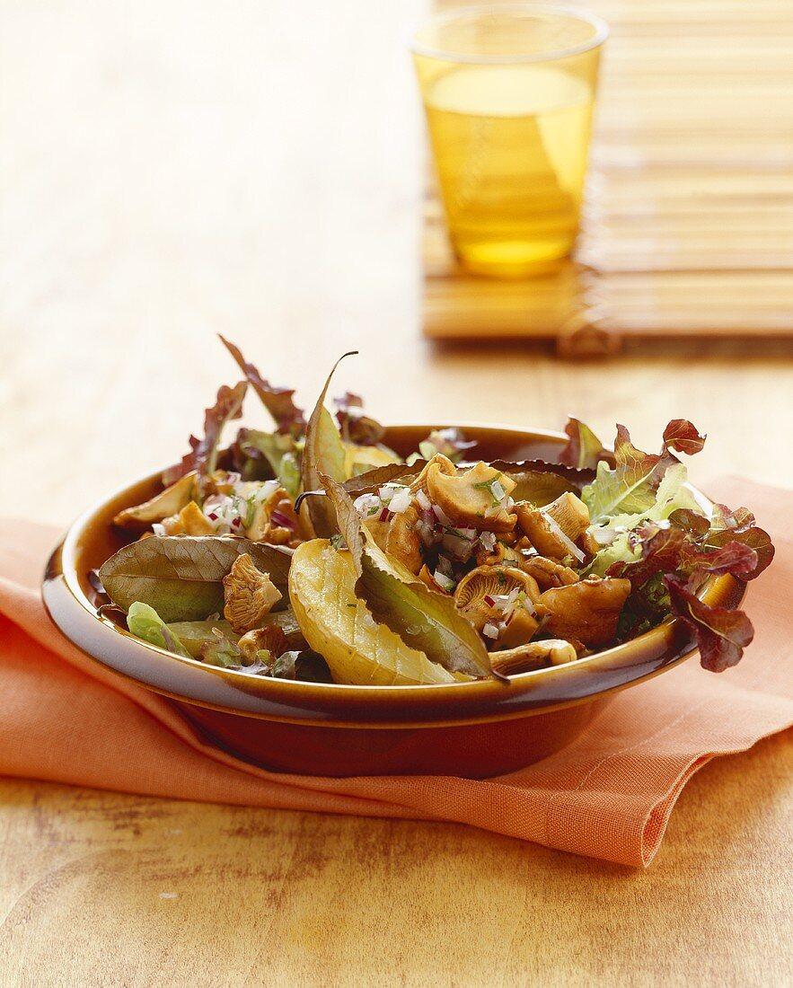 Autumn salad with chanterelles