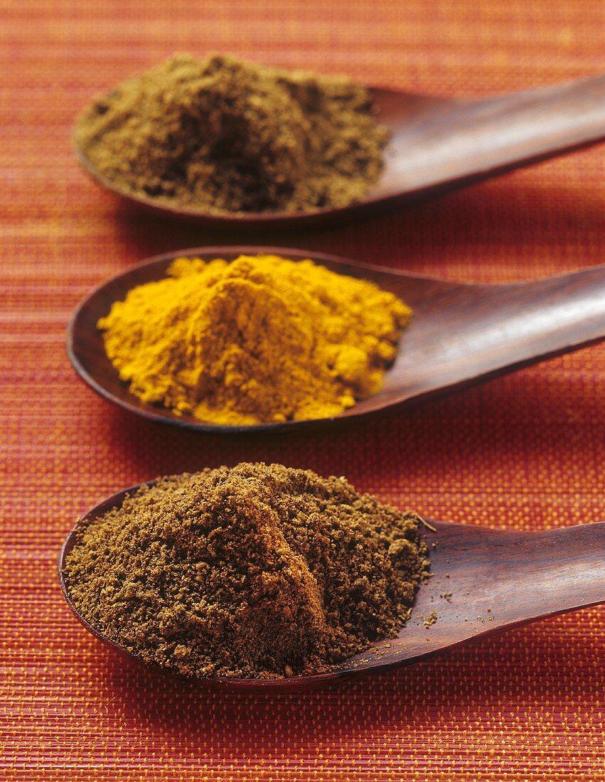 Ras el hanout, Madras curry powder, garam masala on wooden spoons