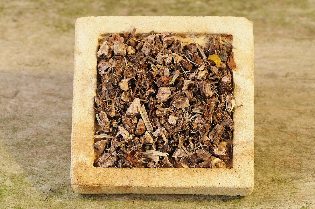 Dried herb bennet (Geum urbanum L.) on a stone slab