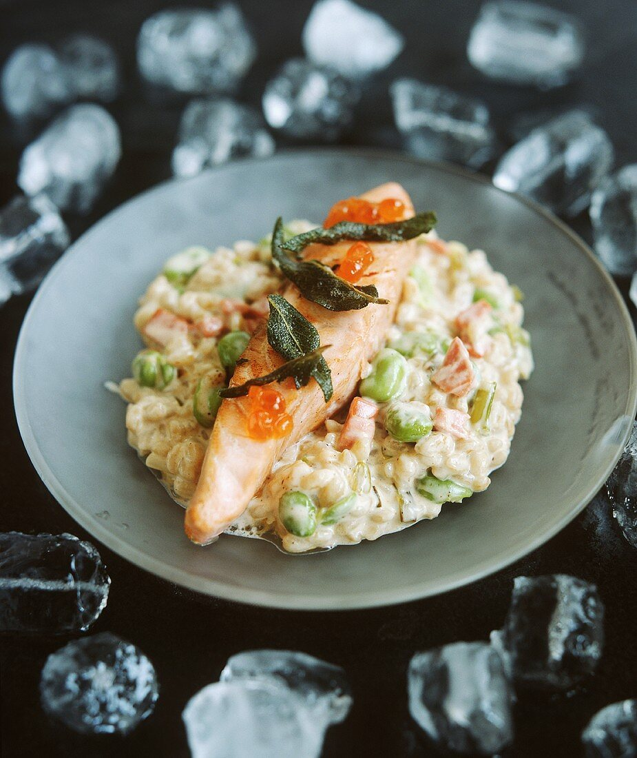 Salmon on vegetable risotto