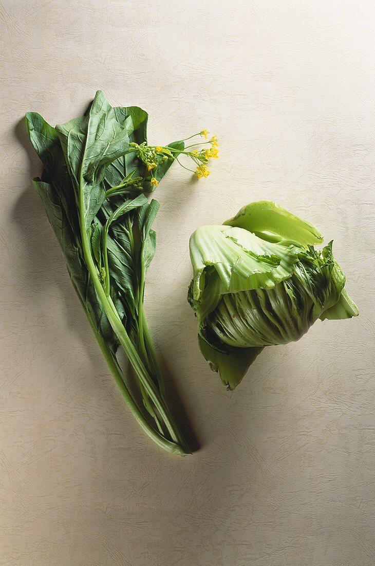 Choy sum & gai choi (Chinese flowering cabbage & Chinese mustard)