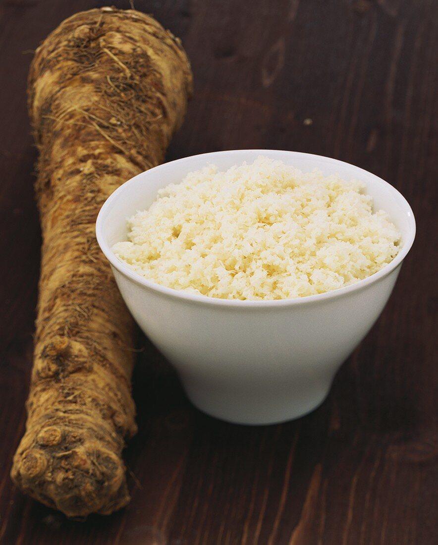 Horseradish root and grated horseradish in a bowl