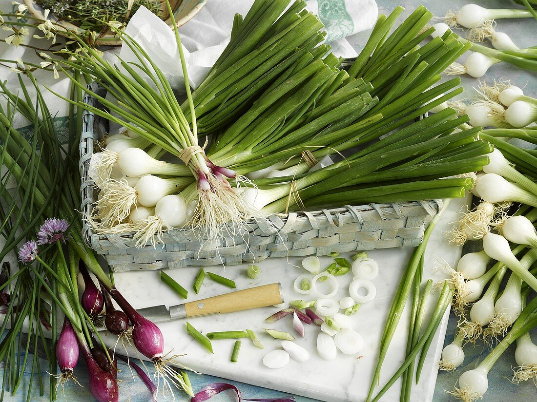 Still life with white and red spring onions