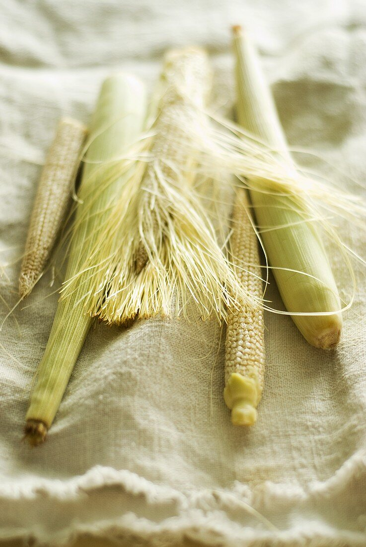Baby corn on linen cloth
