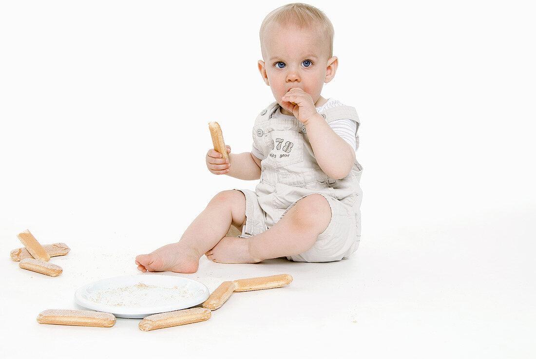 Small boy eating a sponge finger