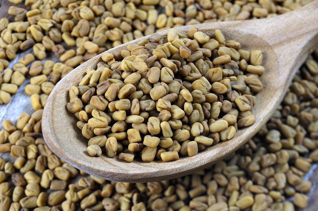 Fenugreek seeds on wooden spoon