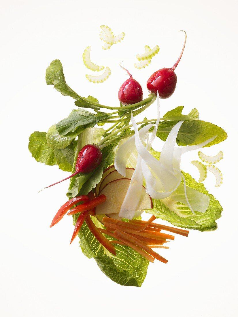 Raw food diet: salad leaves, radishes, celery, apple, radish