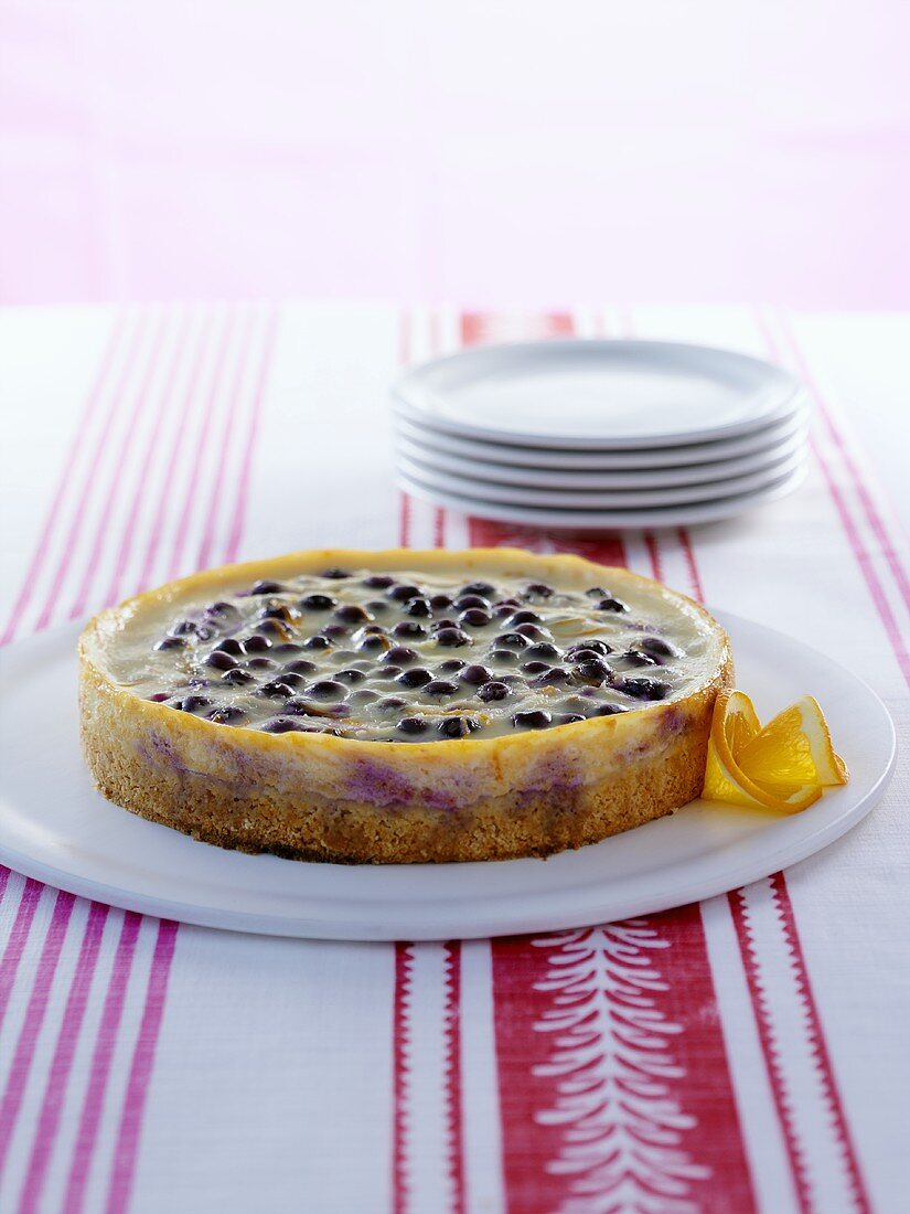 Blueberry flan with cinnamon-achiote crust