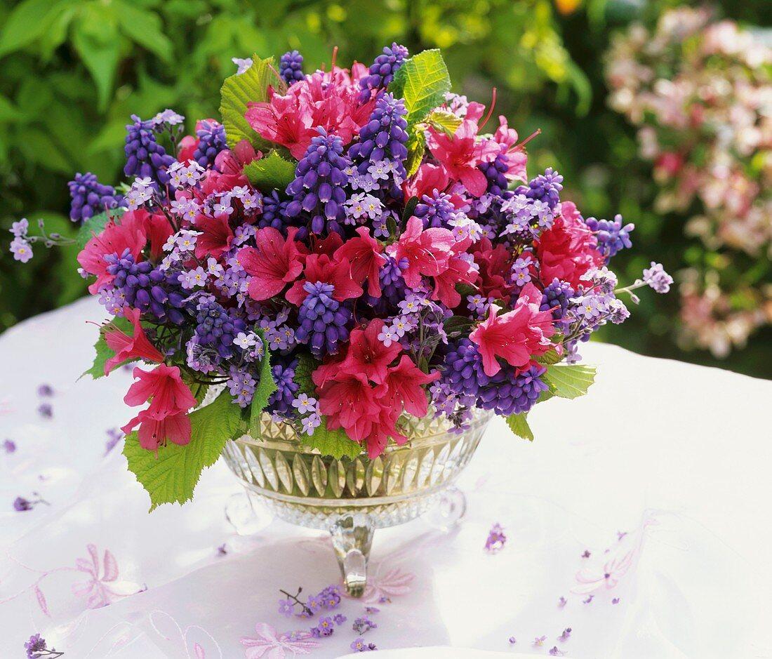 Spring arrangement of azaleas and grape hyacinths
