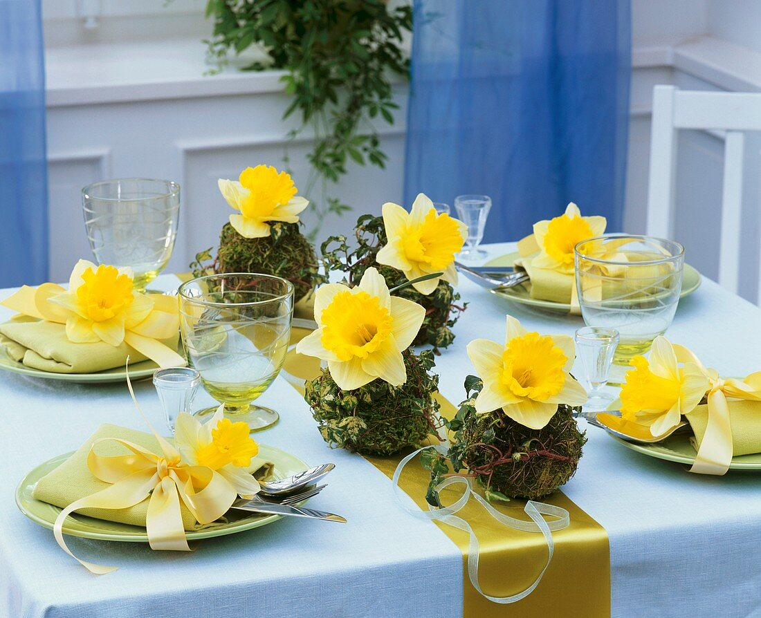 Narcissi and moss balls (table decoration)