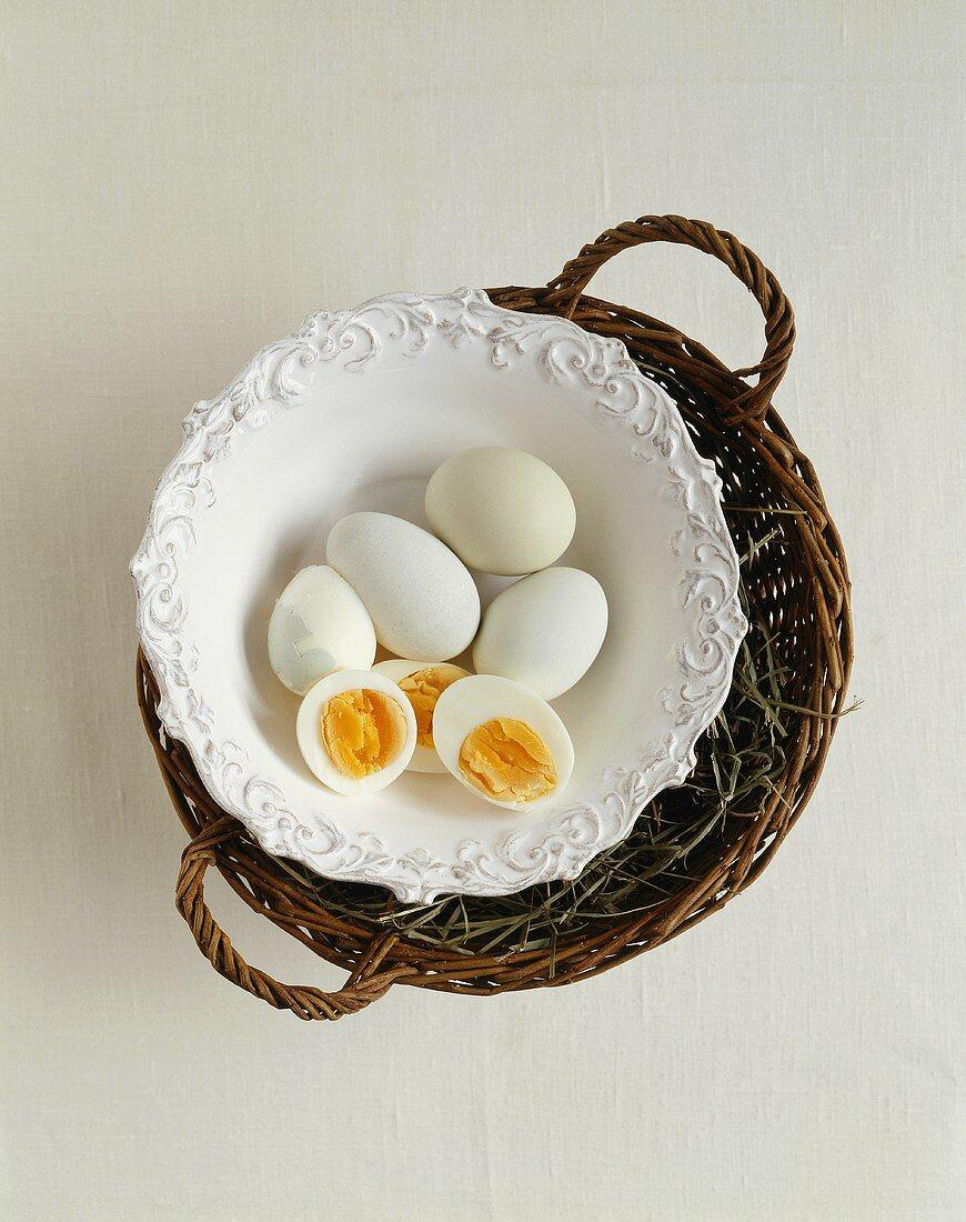 Boiled eggs from Araucana hens