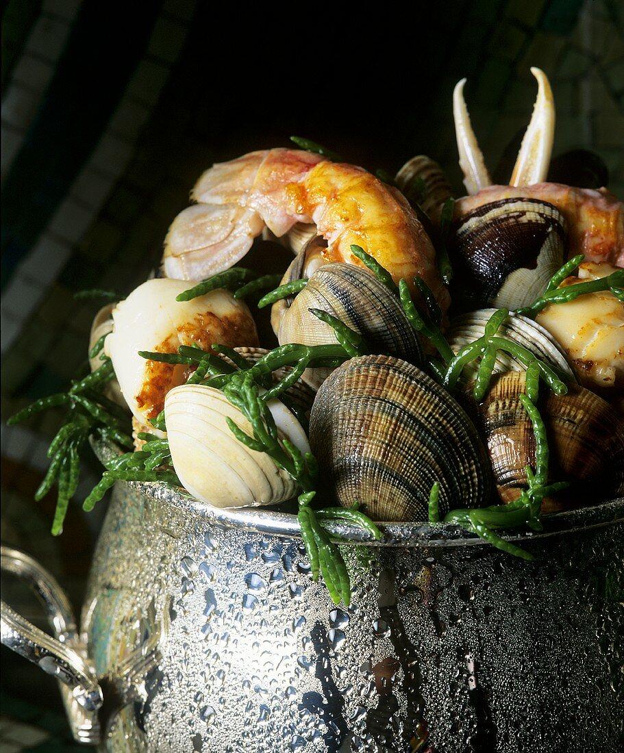Shellfish with samphire in pot